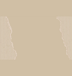 Texture corrugated cardboard blank paper vector