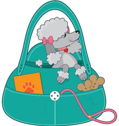 travel poodle vector image