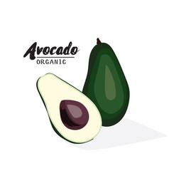 cartoon avocado ripe green fruit vegetarian vector image vector image