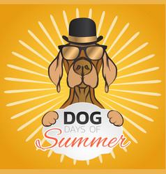 Dog days summer logo icon design vector