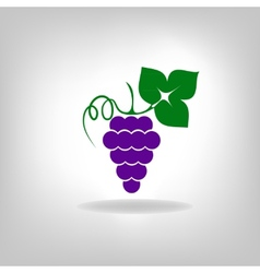 silhouette of grapes vector image