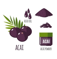 Superfood acai berry set in flat style vector image