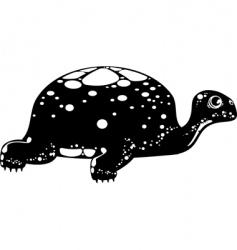 tortoise vector image