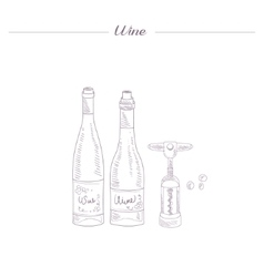 Two Wine Bottles And Corkscrew Hand Drawn vector image