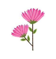 pink flower spring image sketch vector image