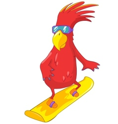 Funny Parrot Snowboarding vector image