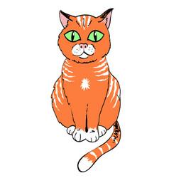 Cartoon image of cat vector