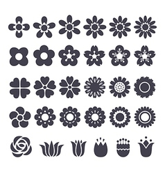 flower decorative icon vector image