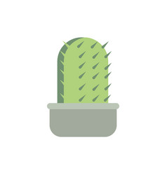 potted cactus decoration natural floral botanical vector image