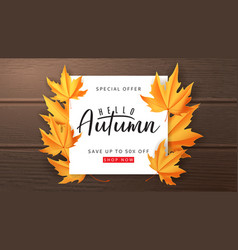 seasonal autumn sale banner vector image