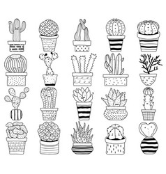set cactus cacti aloe succulent plants vector image