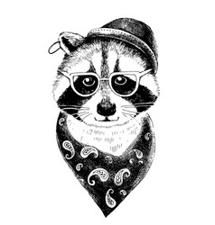 hand drawn dressed up raccoon hipster vector image