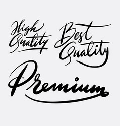 high quality and premium hand written typography vector image vector image