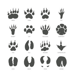 Animal trails - modern isolated set vector