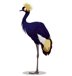 Black crowned crane cartoon vector
