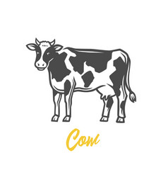 cow black and white vector image