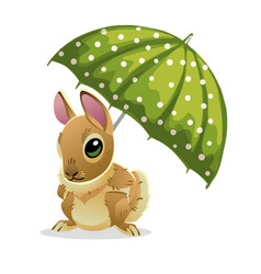 cute rabbit under a green umbrella isolated on vector image
