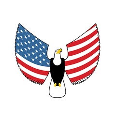 Eagle with American flag wings USA national symbol vector