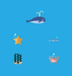Flat icon sea set of sea star cachalot cancer vector