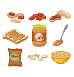 flat set of peanut products whole and vector image