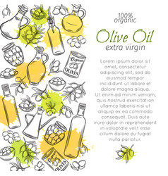 Hand drawn olive oil and olives vector
