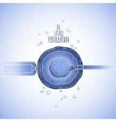 In vitor fertilisation vector