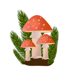Red amanita mushrooms in forest on white vector