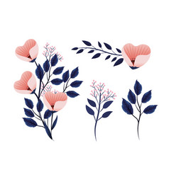 set exotic flowers plants with nature branches vector image