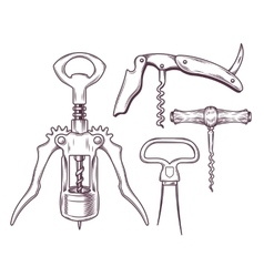 set of corkscrews tailspins openers vector image