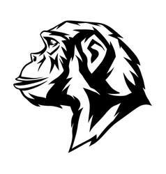 Wild monkey head vector