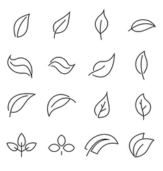 Abstract linear leaf icons vector image vector image