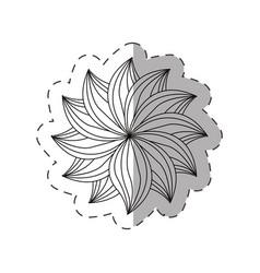 dahlia flower decoration monochrome vector image vector image
