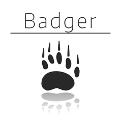 Badger animal track vector image vector image