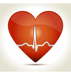 Red heart normal rhytm vector image