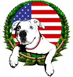 American bulldog with American flag vector