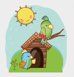 cute animals green and blue parrots in branch vector image