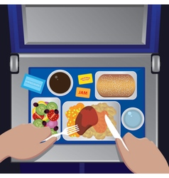 Dinner on the plane from first view vector image