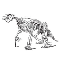 Full megatherium fossil skeleton vintage vector