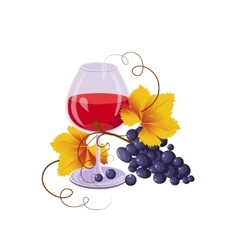 Glass of Red Wine and Black Grapes vector image