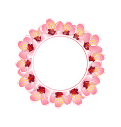 momo peach flower blossom banner wreath vector image