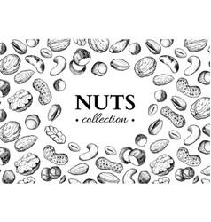 Nuts vintage frame hand drawn vector