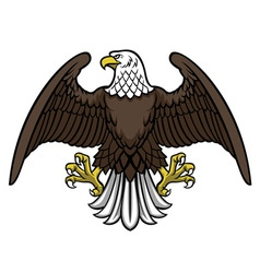 bald eagle spread the wing vector image