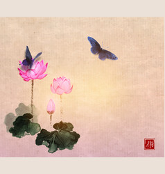 Big butterflies and lotus flowers on vintage vector