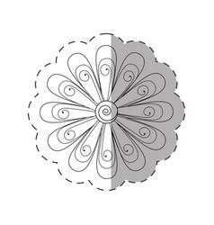 daisy flower decoration monochrome vector image