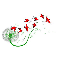Dandelion and birds vector
