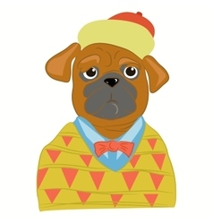 Hipster pug dog in cool fashion clothes vector