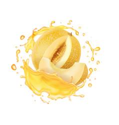 Melon yellow fruit juice splash vector