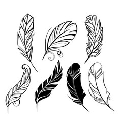 small feather vector image