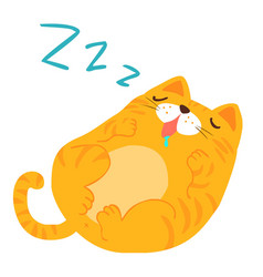 fluffy sleeping sweet dream cat xa vector image vector image
