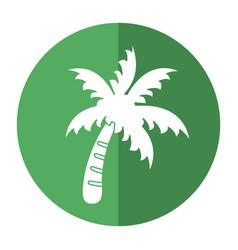 palm tree beach symbol shadow vector image